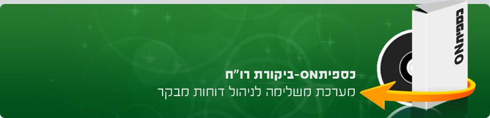 """כספיתON - ביקורת רו""""ח"""